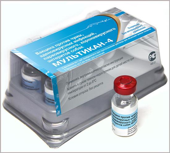 коронавирусного энтеритов