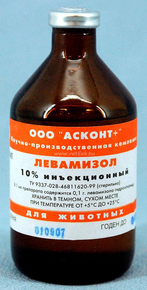 Гемонхоз фото
