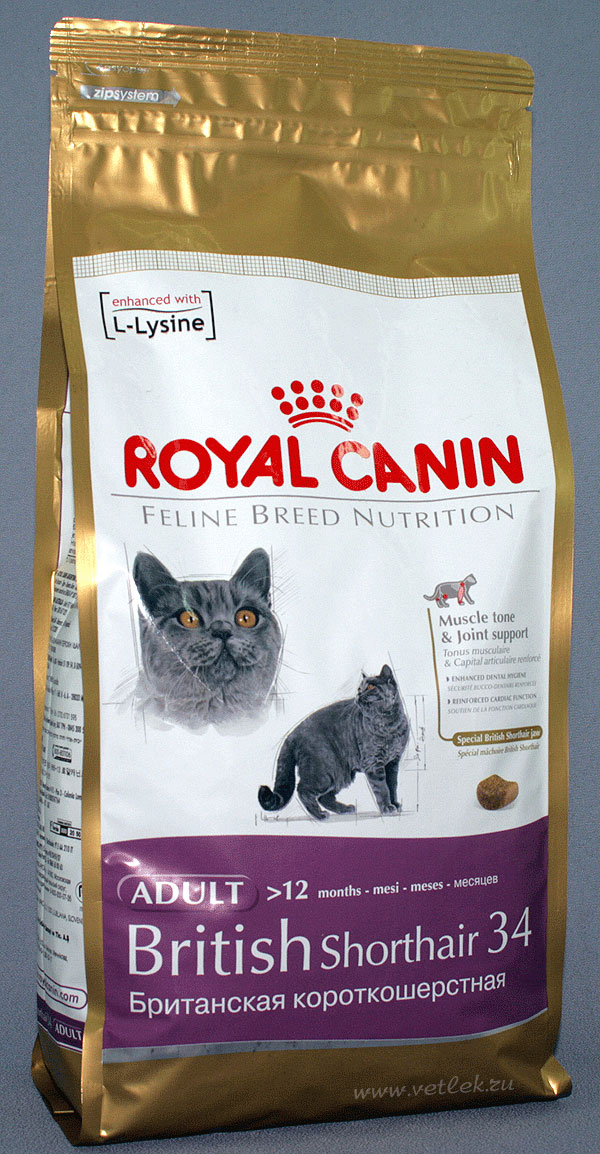 Шотландская вислоухая корм royal canin