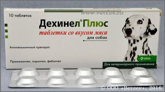 Лекарства для собак от сахарного диабета у