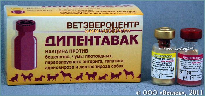 Прививки для собак название вакцины