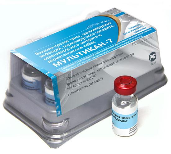 коронавирусного энтеритов,
