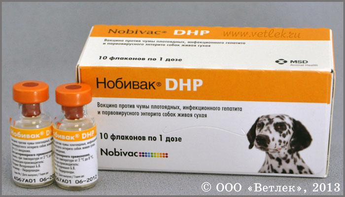 Лечение гепатита с в туле