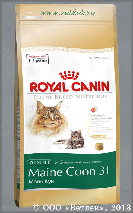 15 455040 royal canin maine coon 31 4. Black Bedroom Furniture Sets. Home Design Ideas