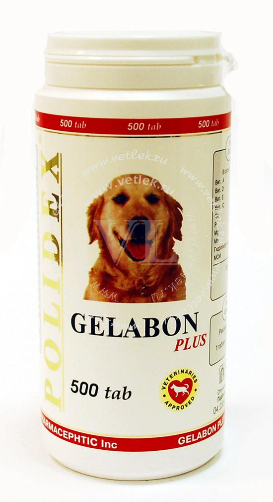 гелабон плюс для собак инструкция - фото 7