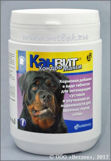 Виаминные добавки для собак для лечения суставов что пить для суставов бодибилдинг